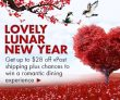 vPost Lunar New Year Deal 2017
